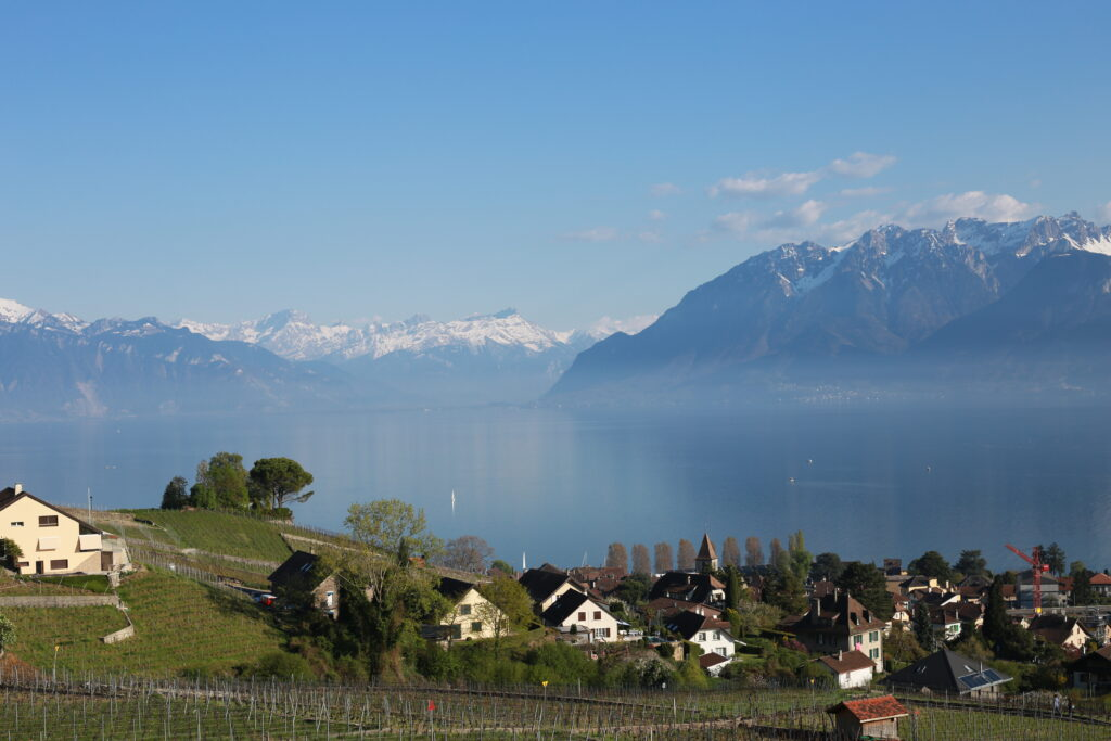 HOW I LANDED A JOB IN SWITZERLAND AS A FOREIGNER WITH NO WORK EXPERIENCE