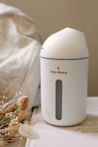 Hey dewy humidifier
